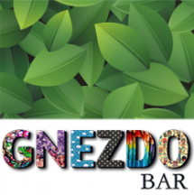Gnezdo Bar