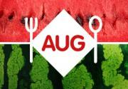 Гастронаводки августа