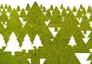 Чем заменить новогоднюю елку или как нестандартно украсить жилье к празднику