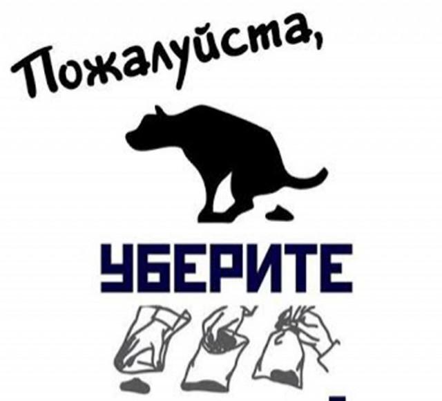 """За неубранные """"кучки"""" предлагают штрафовать на 500 гривен"""