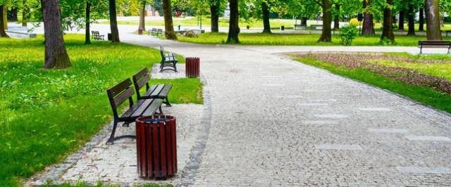 Предполагается, что парк отдыха будет занимать площадь 4,55 га