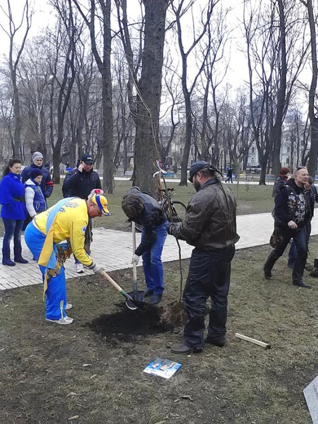 """Высадка кленов. Фото КО """"Київзеленбуд"""", Facebook"""