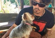 Австралийские власти грозятся усыпить собак Джонни Деппа