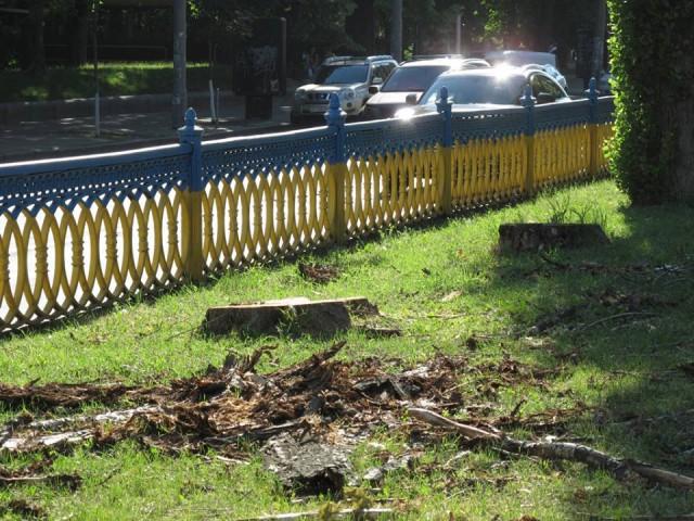 В соцсетях киевляне высказывают недовольство вырубкой деревьев