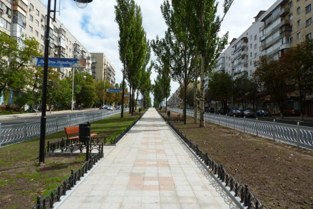 40% деревьев в городе достигли средней возрастной границы и требуют замены