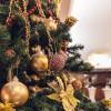 """Новогоднее предложение от отеля """"Премьер Палас"""" и ресторана """"Терракота"""""""