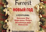 """Новогодняя ночь в ресторане """"Forrest Club"""""""