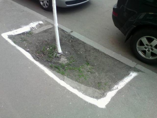 Побілені тротуар та пил на вулиці Києва. Фото: Лев Шевченко
