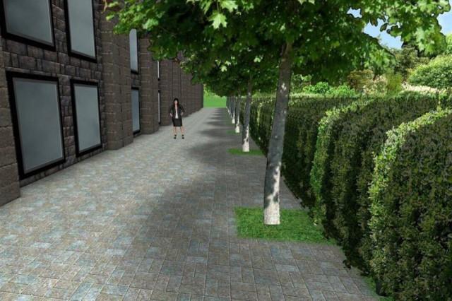 «Киевзеленстрой» планирует создать зеленый «забор» на месте стихийного перехода на Бессарабке
