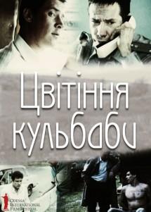 Цветение одуванчика / ОМКФ