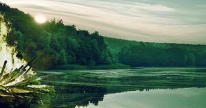 Подорожі Україною: куди поїхати киянину на свято Івана Купала та на вихідні