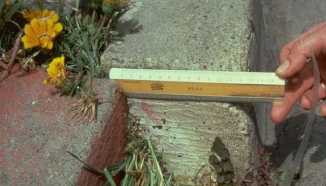 Измерения 1979 года Фото: Dr. Sue Ellen Hirschfeld
