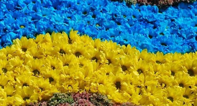 Украинцев приглашают присоединиться к акции