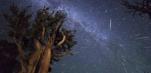 Пик метеоритного потока придется на 11-12 августа