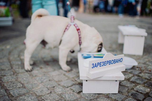 3-4 сентября 2016 года на Контрактовой площади состоится 9-й фестиваль «В поисках MADE IN UKRAINE»