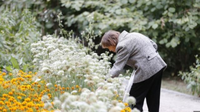 В Ботаническом саду хотят увеличить этот участок и оборудовать его для людей с ограниченными возможностями