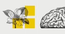 Шевели мозгами: лучшие образовательные мероприятия декабря