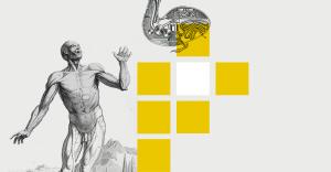Шевели мозгами: лучшие образовательные мероприятия января