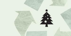 Все хвойные попадают в рай: куда девать елки после новогодних праздников