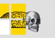 Шевели мозгами: лучшие образовательные мероприятия февраля