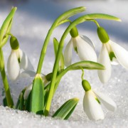 Завтра в Украине резко потеплеет