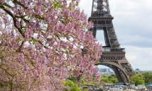 Французская весна 2017 в Киеве: гид по программе фестиваля