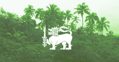 Удивляя местных или Как объехать весь Цейлон с палаткой. Часть 2