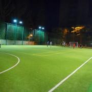 На территории Долобецкого острова планируется строительство футбольной площадки