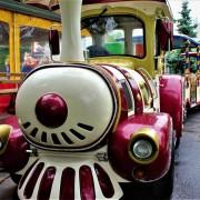 В Деснянском парке для детей проведут бесплатные экскурсии на поезде