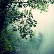 Завтра в Украине снова дожди и грозы