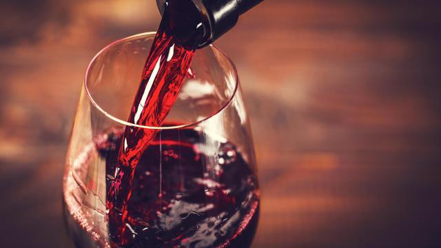 Британские ученые доказали пользу алкоголя для нашей памяти