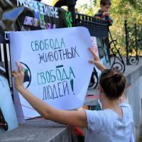 В Киеве пройдет марш за права животных