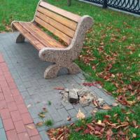 Неизвестные украли все урны на отремонтированном «Каштановом бульваре»