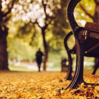 В Соломенском районе реконструируют парк