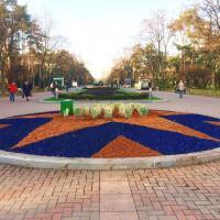 В двух парках Киева появились яркие клумбы. Фото