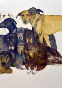 Собаки в искусстве