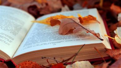 Домашнее чтение: 15 новых книг, которые нужны вам этой осенью