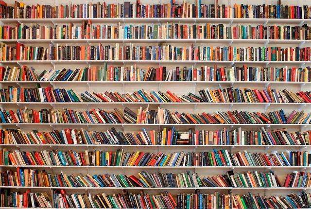 Новые книги, которые мы советуем в ноябре