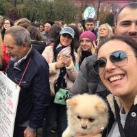 По всей Украине проходят марши за права животных: видео