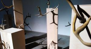 ART октябрь: рейтинг выставок месяца по нестандартным признакам