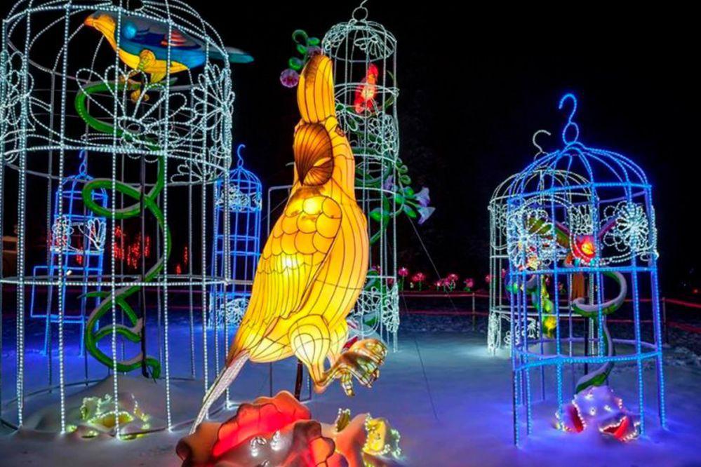Фестиваль китайских фонарей продлили на неделю