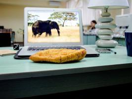 Осторожно, горячо: фото с перепичкой в офисной реальности редакции Gloss