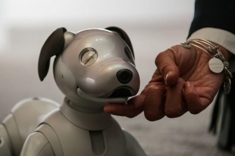 Вместо шкодного щенка: Sony представила робота-собаку Aibo (видео)