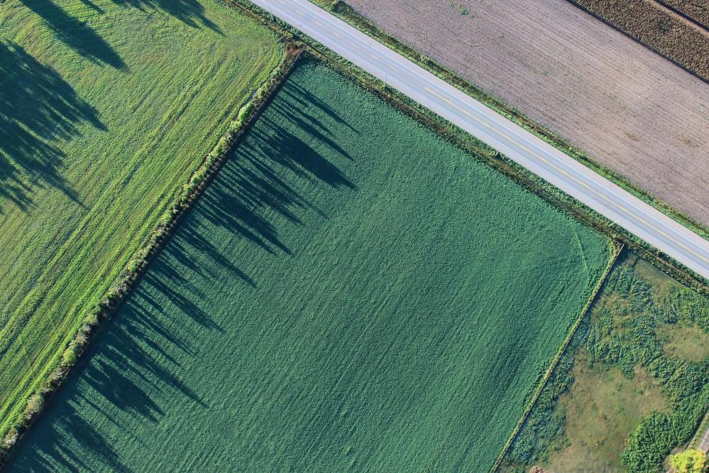Президент подписал закон о рынке земли в Украине