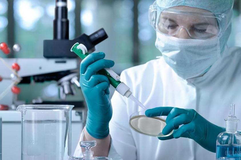 Коронавирус в Украине: у людей будут массово проверять антитела и иммунитет