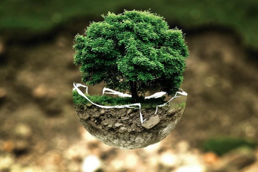 День Земли: в честь праздника Google представил символический дудл