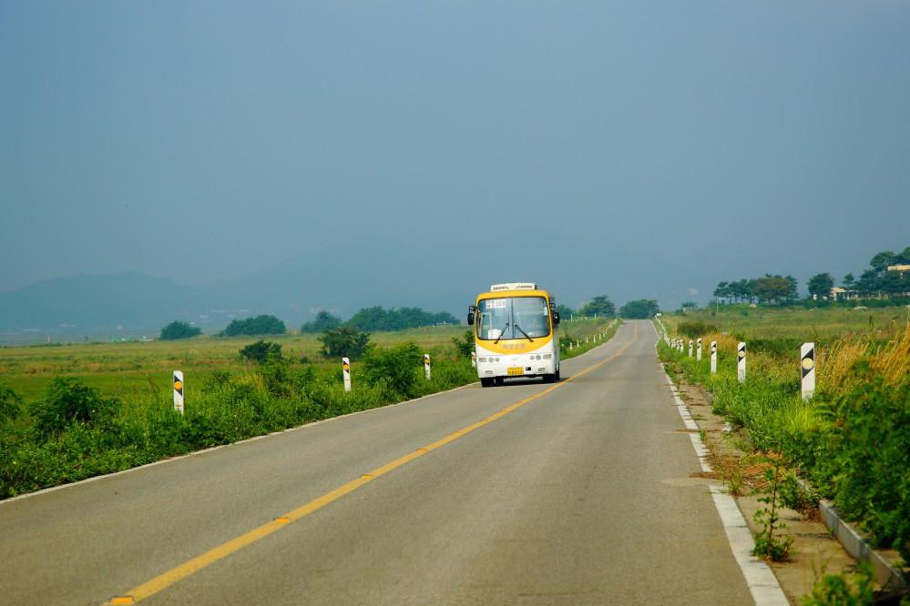 Стало известно, когда могут запустить городской, пригородный и междугородний транспорт