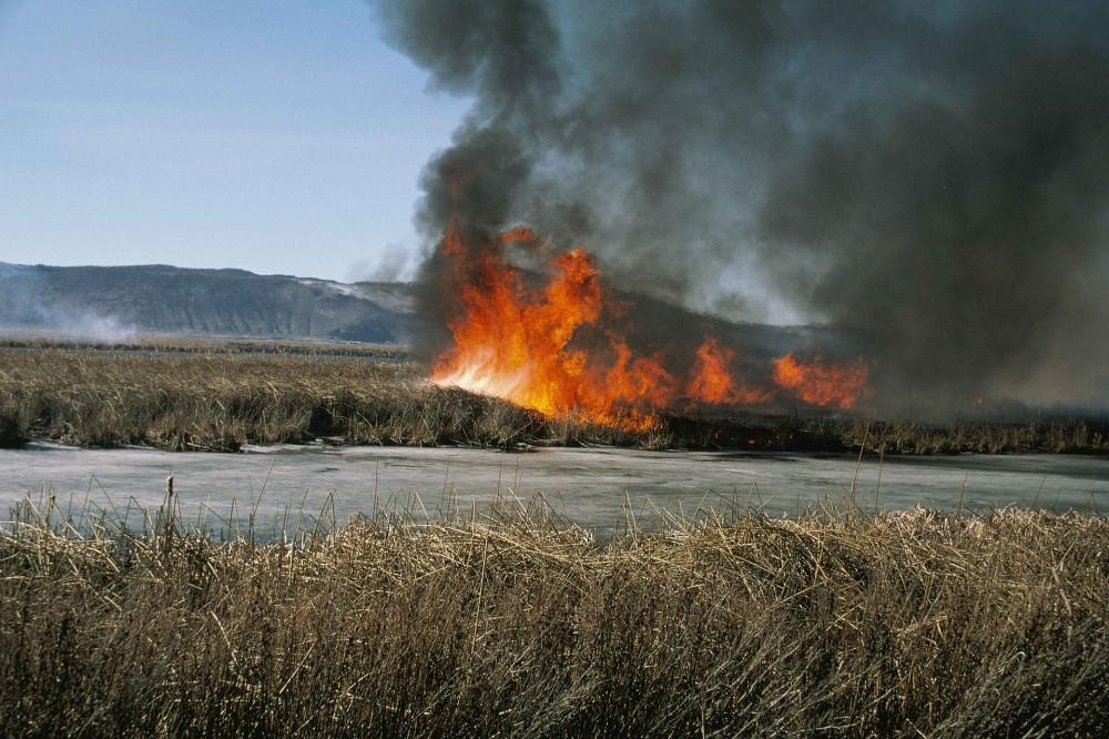 Без туристов: пожар в Чернобыле уничтожил более 30% культурных объектов