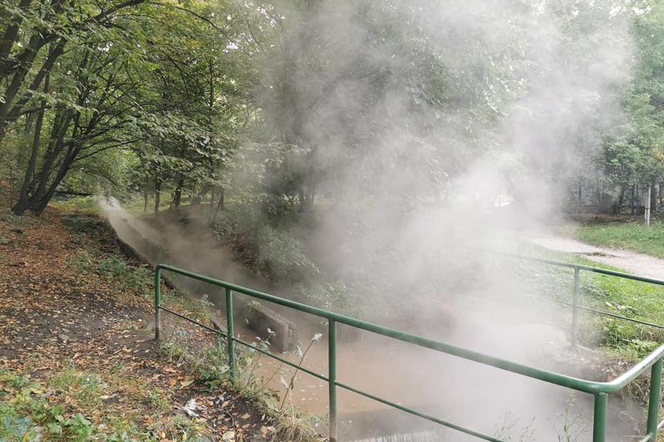 Было горячо: в пруды Голосеевского района слили кипяток. Фото и видео
