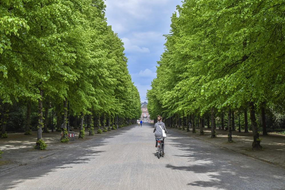В шести районах Киева появятся 11 новых зон отдыха. Адреса